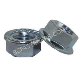 Flange Nuts Serrated Zinc